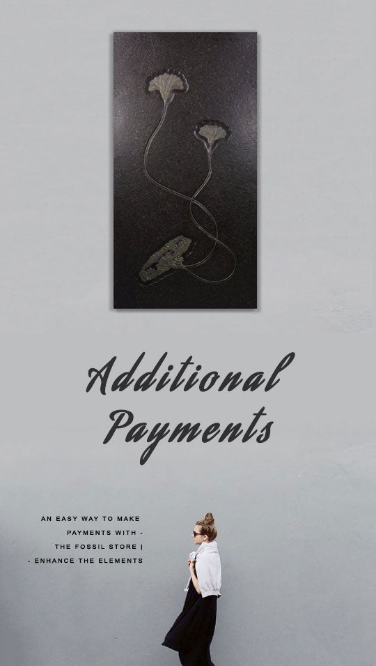 Additional Payments are an easy way to make payments to The Fossil Store