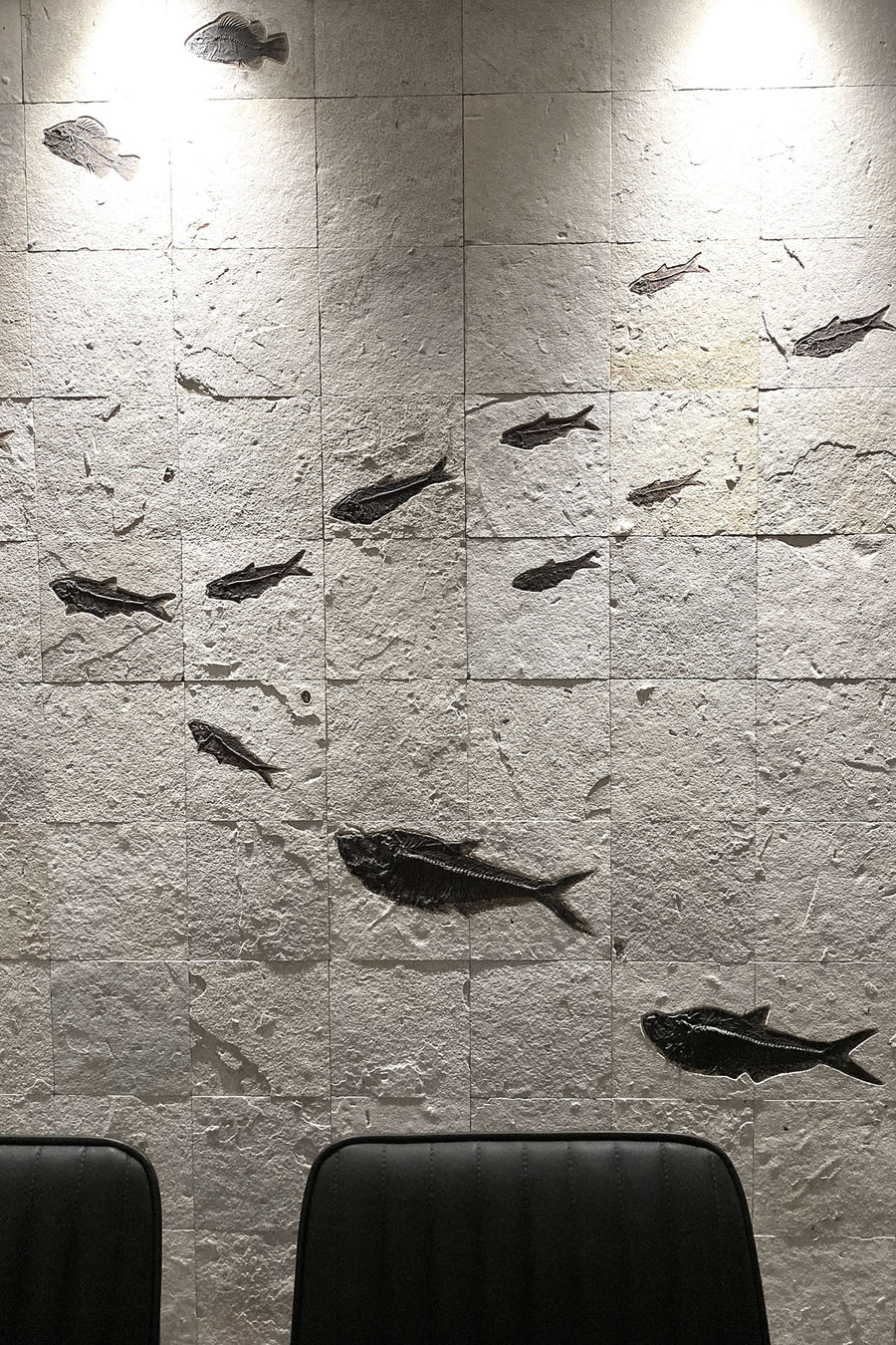 Luxury Feature Fish Mosaic Wall