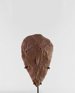 Palaeolithic Clovis Shaped Adze 278mm