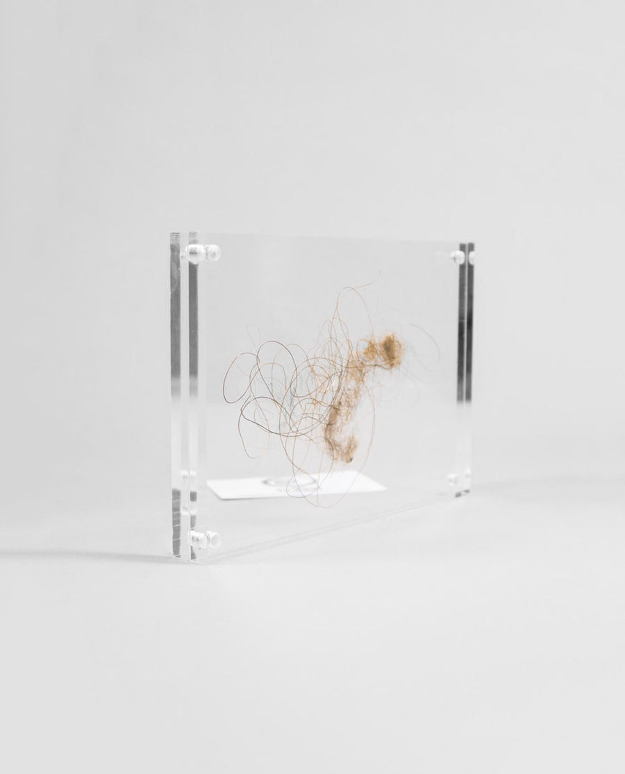 A modern acrylic frame with Mammoth hair inclusions within measuring 210mm
