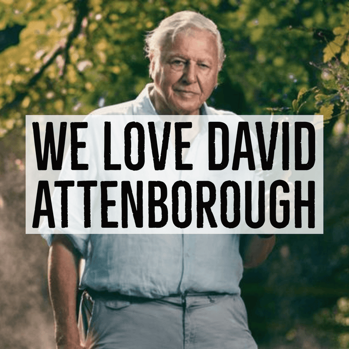 David Attenborough T-Shirt Available Now