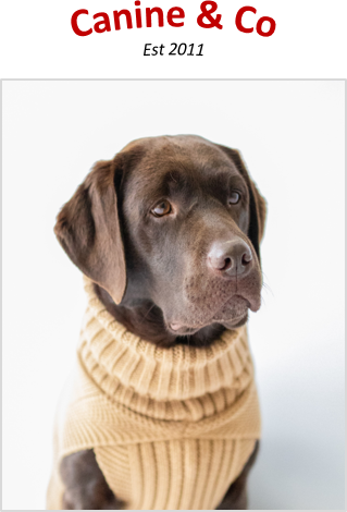 The face of Canine & Co Dog Jumpers