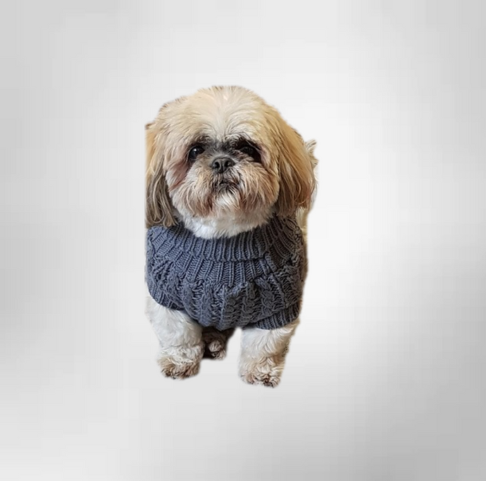 The Chunk Dog Jumper in Grey