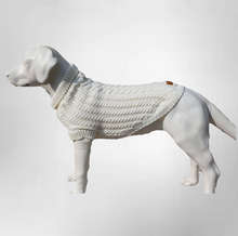 Load image into Gallery viewer, The Gelert Dog Jumper in Oatmeal