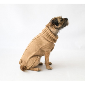 The Jazz Dog Jumper in Camel