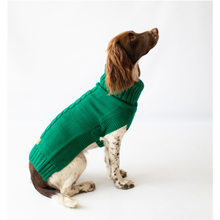 Load image into Gallery viewer, The Jazz Dog Jumper in Green
