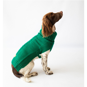 The Jazz Dog Jumper in Green