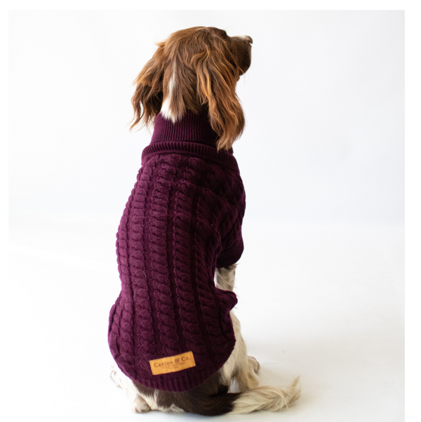 The Rascal Dog Jumper in Grape