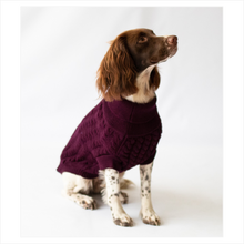 Load image into Gallery viewer, The Rascal Dog Jumper in Grape