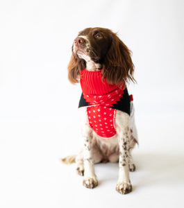 Rudolf Dog Jumper