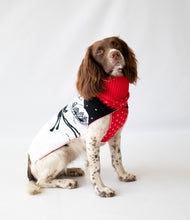 Load image into Gallery viewer, Rudolf Dog Jumper