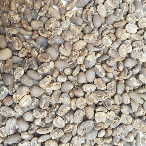 green coffee beans from Sumatra, Indonesia.