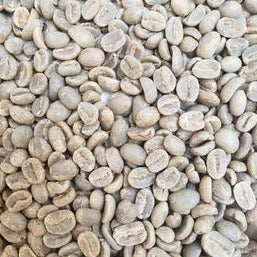 unroasted coffee beans from guatemala; this lot of green coffee should be roasted to a medium roast or a dark roast