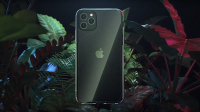 The Best iPhone 11 Cases of 2020