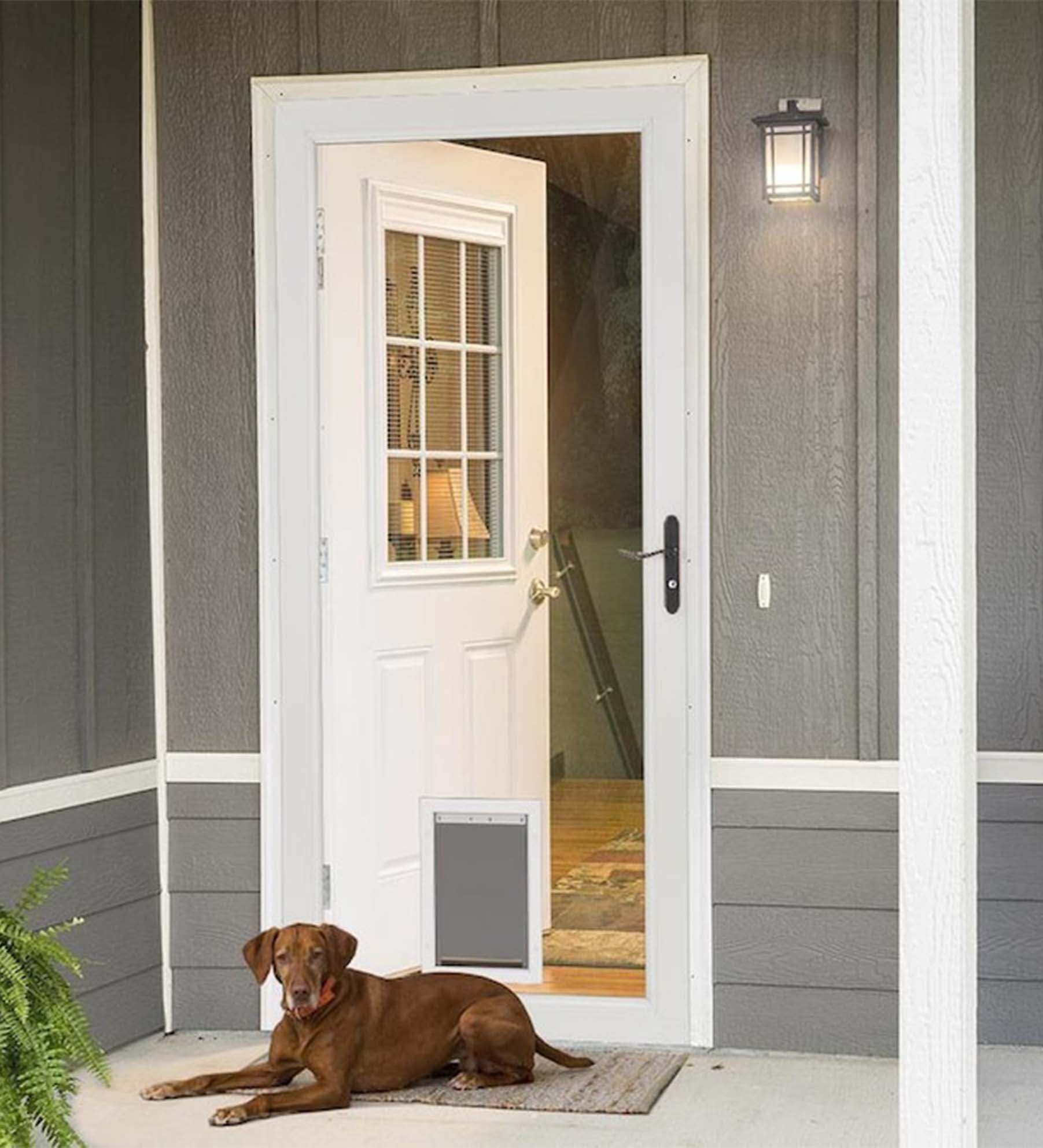 INSTALLED Larson Elegant Selection Pet Dog Storm Door w/ Hardware
