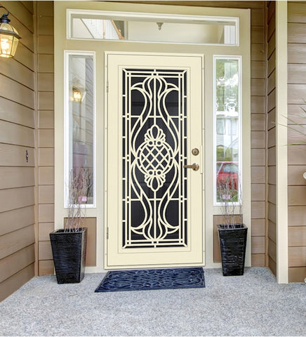 INSTALLED Titan Premium Aluminum Security Screen Single Door Manchester STARTING $1,110