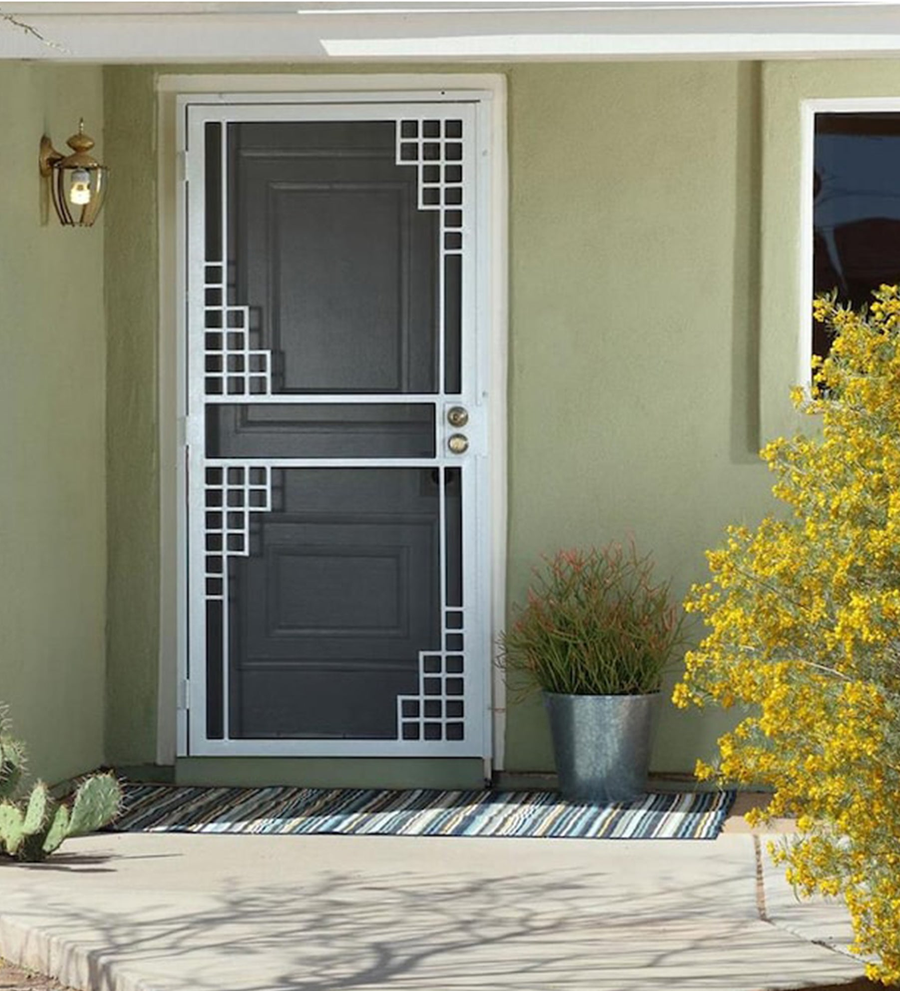 INSTALLED Gatehouse Monterey Steel Single Door STARTING $565