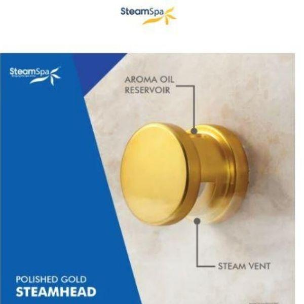SteamSpa QuickStart Indulgence 4.5KW Acu-Steam Bath Generator IN450GD Steam Head View