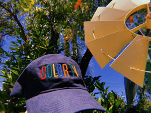 COLOR TV Hat