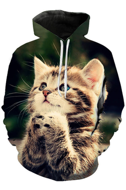 Unisex 3D Graphic Hoodies  Animals Cats American Shorthair Expect