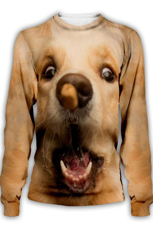 3D Graphic  Animals Dogs Golden Retriever Play