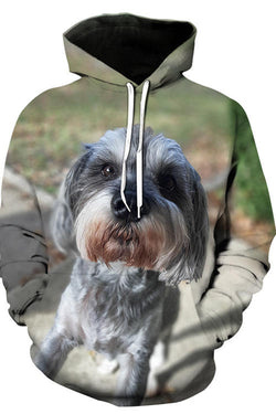3D Graphic Hoodies  Animals Lovely Dogs
