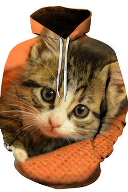 Unisex 3D Graphic Hoodies Sweatshirts Animals Cats American Shorthair Orange