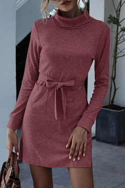 High Neck Long Sleeve Lace Pocket Dress