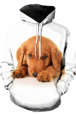 3D Graphic Hoodies Animals Dogs Golden Retriever Down