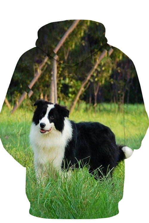 3D Graphic Hoodies Animals Dogs Border Collie Thick Growth Of Grass
