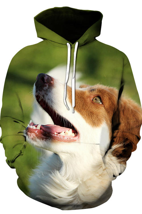 Unisex 3D Graphic Hoodies Animals Dogs Border Collie Look Into The Distance