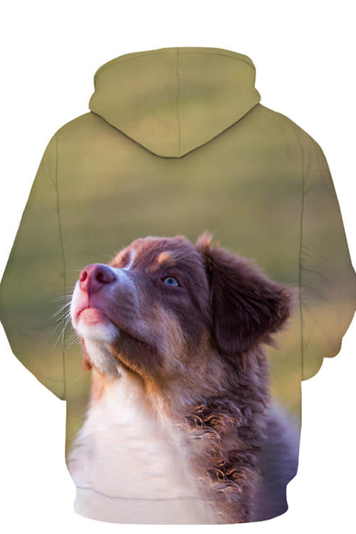 3D Graphic Hoodies Animals Dogs Australian Shepherd Looking Into The Distance