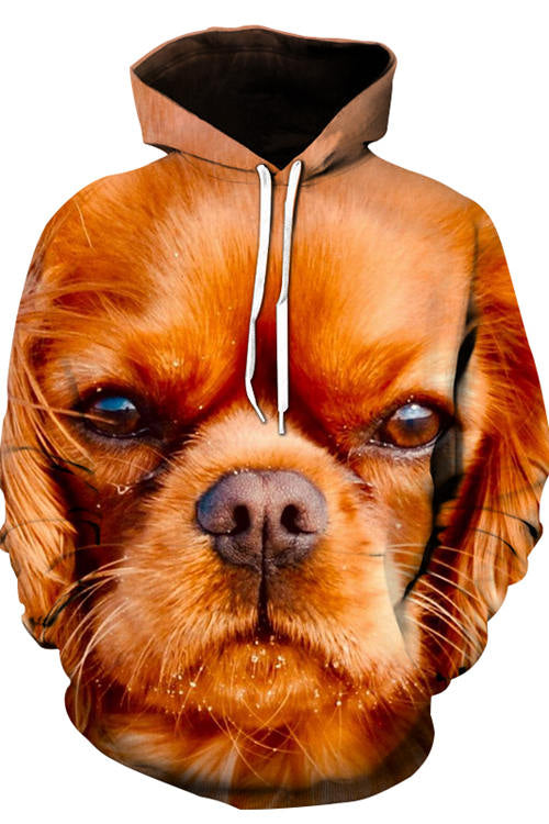 3D Graphic Hoodies Animals Dogs King Charles Spaniel