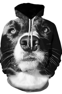 3D Graphic Hoodies Animals Dogs Border Collie