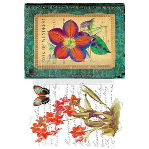 Redesign with Prima - Re.Design Decor Transfers - Wondrous Flora