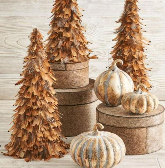 Camel Feathered Cone Tree - 3 Different Sizes
