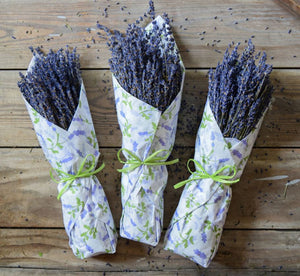 LAVENDER IN TISSUE - LAVENDER FIELDS DESIGN