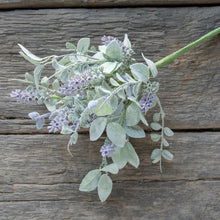 "Load image into Gallery viewer, 14.5"" LAVENDER AND LAMBS EAR BUSH"