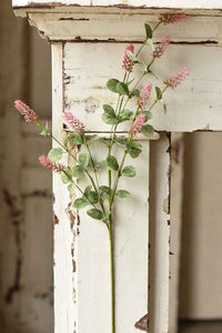 Yarrow Buds Stem | 35"