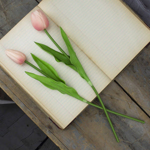 Honey and Me - Large Light Pink Tulip Stem Set