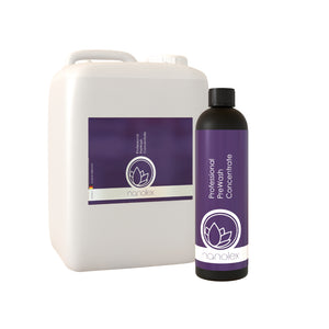 Professional PreWash Concentrate