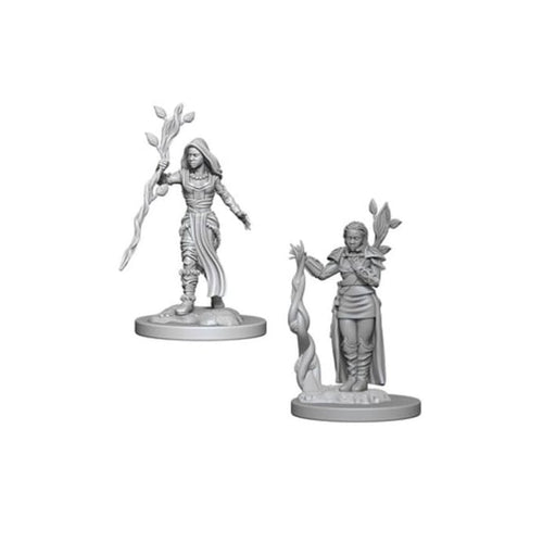 D&D Nolzur's Marvelous Miniatures: Human Female Druid
