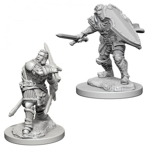 D&D Nolzur's Marvelous Miniatures: Human Male Paladin