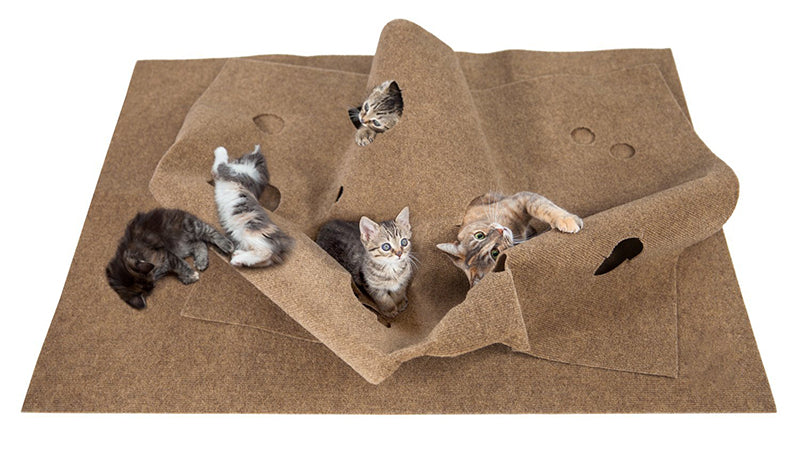(BUY 2 FREE SHIPPING) Cat Activity Play Mat