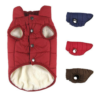 Fleece Lined Windbreaker for Dogs