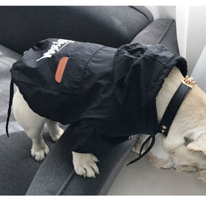 Stussy Raincoat for Dogs
