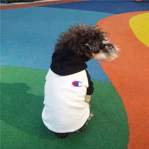 Champion Hoodie for Dogs