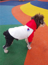 Load image into Gallery viewer, Champion Hoodie for Dogs