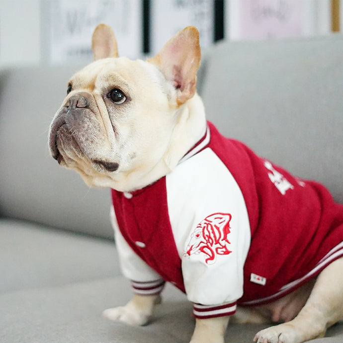 Korea University Letterman Jacket