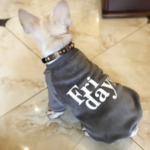 Fridays Hoodie for Dogs